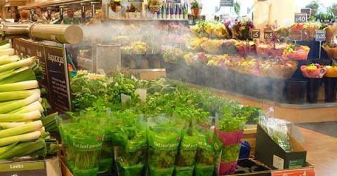 Sử dụng máy tạo ẩm phun sương công nghiệp cho kho bảo quản thực phẩm lạnh