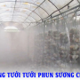 Lợi ích của hệ thống máy phun sương tạo ẩm trong nuôi trồng nấm