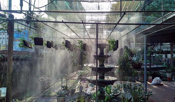 Máy phun sương tạo độ ẩm được các chuyên gia khuyên nên sử dụng cho vườn lan
